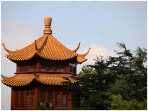 Chinatown-Chinese-Gardens-Sydney-Australia
