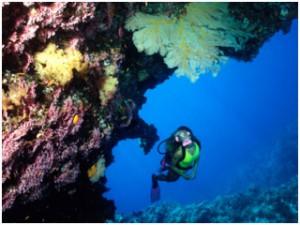 Great-Barrier-Reef-Australia