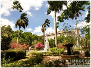 Plaza-Des-Armas-Havana-Cuba