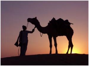 Thar-Desert-Safari-Camel-Ride-Jaisalmer-India
